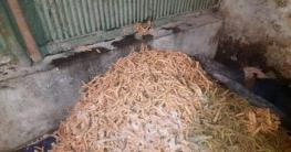 বাসা-বাড়ীতে তৈরি হচ্ছে ভেজাল খাদ্য